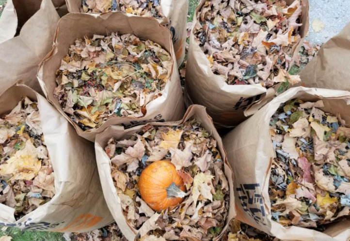 bags with leaf and yard waste